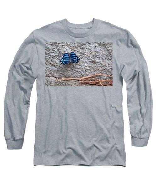 Blue Butterfly Myscelia Ethusa Art Prints Long Sleeve T-Shirt by Valerie Garner
