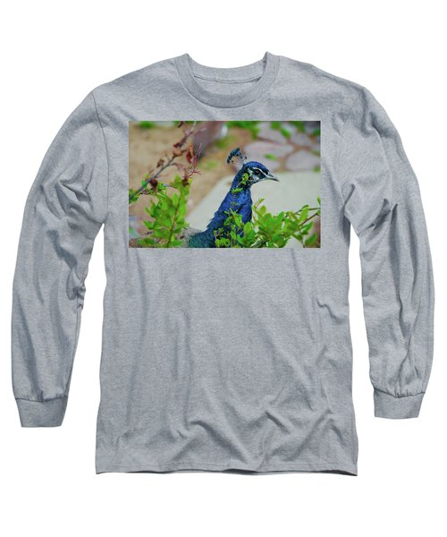 Blue Peacock Green Plants Long Sleeve T-Shirt by Jonah  Anderson