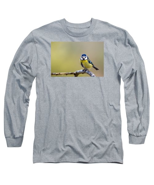 Blue Tit Long Sleeve T-Shirt