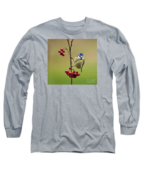 Blue Tit With Hawthorn Berries Long Sleeve T-Shirt by Liz Leyden