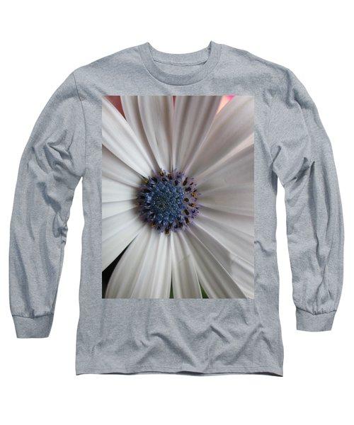 Blue-white Loveliness Long Sleeve T-Shirt