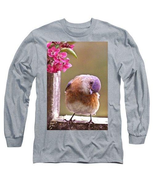Bluebird Long Sleeve T-Shirt by Jean Noren