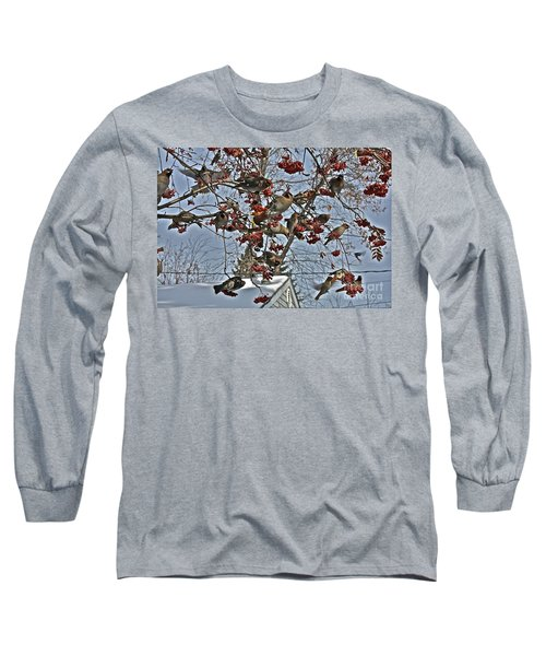 Bohemian Waxwing Feast Long Sleeve T-Shirt by Linda Bianic