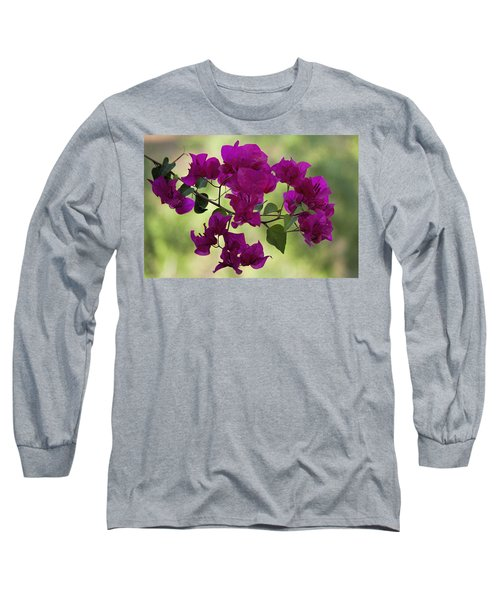 Bougainvillea Long Sleeve T-Shirt by Fred Larson
