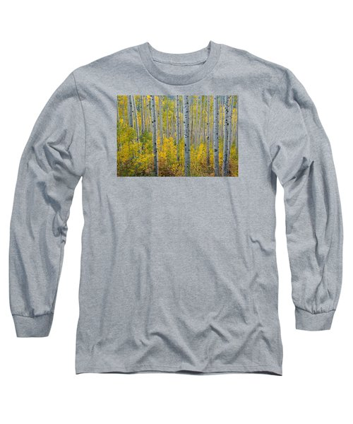 Brilliant Colors Of The Autumn Aspen Forest Long Sleeve T-Shirt