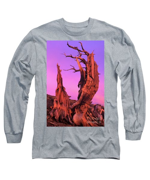 Long Sleeve T-Shirt featuring the photograph Bristlecone Pine At Sunset White Mountains Californa by Dave Welling