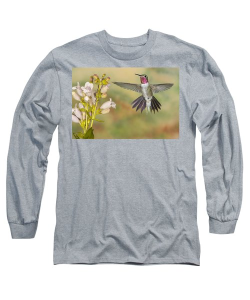 Broad Tailed Hummingbird 2 Long Sleeve T-Shirt