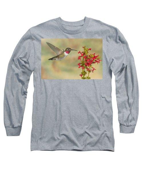 Broad-tailed Hummingbird 5 Long Sleeve T-Shirt