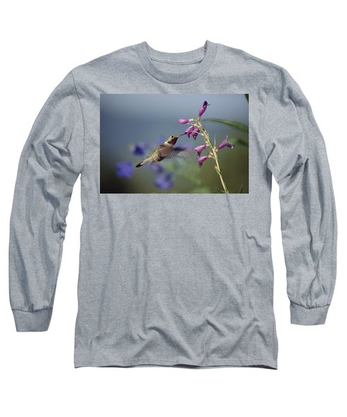 Broad-tailed Hummingbird Feeding New Long Sleeve T-Shirt