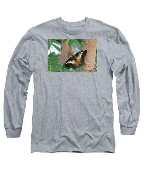 Long Sleeve T-Shirt featuring the photograph Brown Clipper Butterfly #5 by Judy Whitton