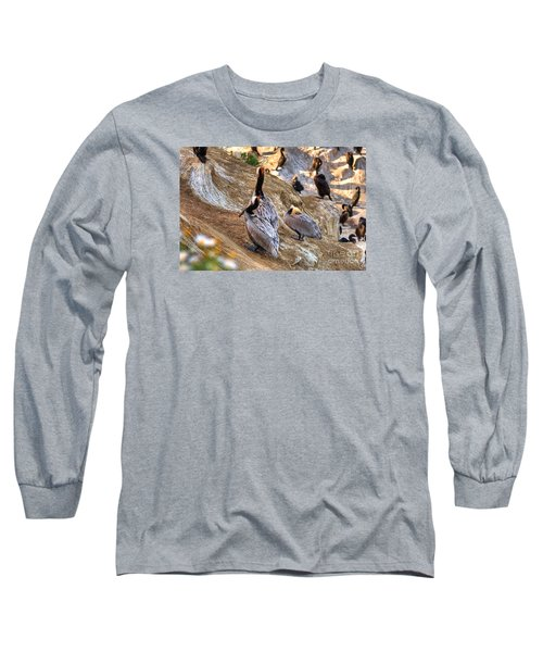 Brown Pelicans At Rest Long Sleeve T-Shirt by Jim Carrell