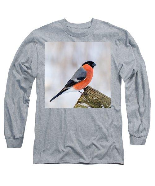 Bullfinch On The Edge Long Sleeve T-Shirt