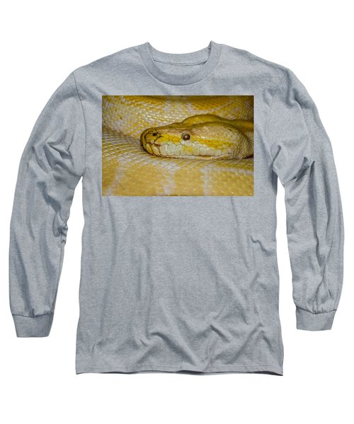Burmese Python Long Sleeve T-Shirt