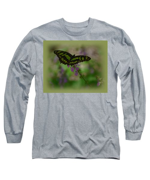 Long Sleeve T-Shirt featuring the photograph Butterfly 4 by Leticia Latocki