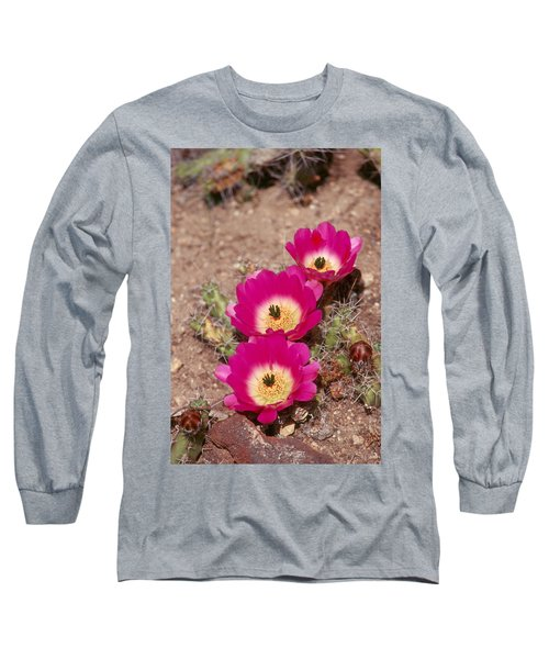 Cactus 1 Long Sleeve T-Shirt by Andy Shomock