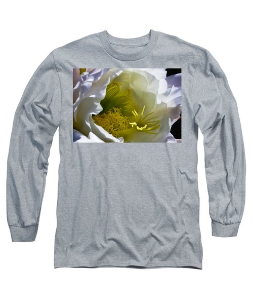 Cactus Interior Long Sleeve T-Shirt