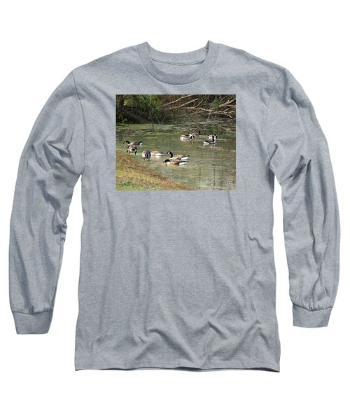 Canadian Geese Feeding In Backwaters Long Sleeve T-Shirt by William Tanneberger