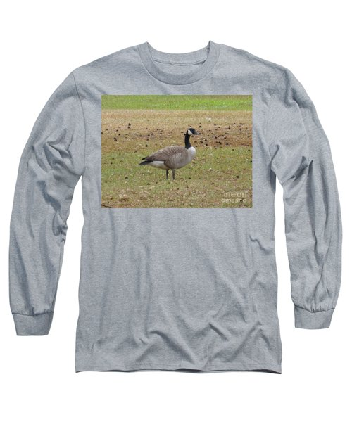 Canadian Goose Strutting  Long Sleeve T-Shirt