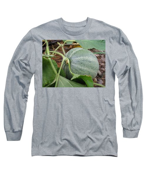 Cantaloupe  Long Sleeve T-Shirt by Jennifer Wheatley Wolf