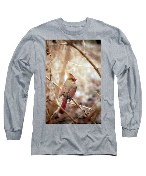 Cardinal Birds Female Long Sleeve T-Shirt by Peggy Franz