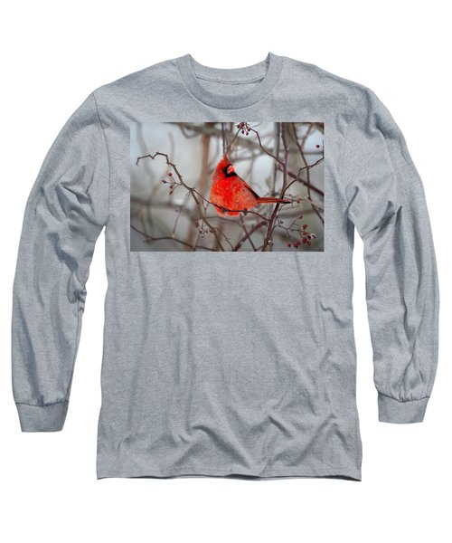 Cardinal Long Sleeve T-Shirt