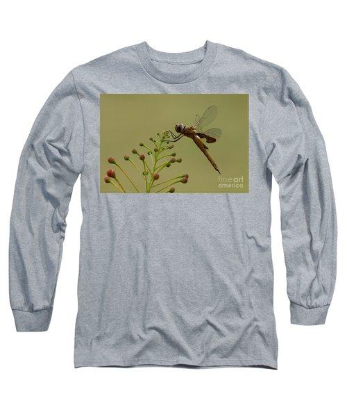 Carolina Saddlebags Long Sleeve T-Shirt