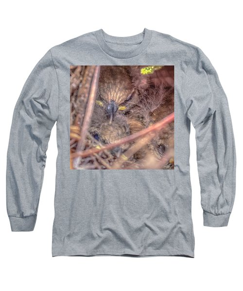 Long Sleeve T-Shirt featuring the photograph Carolina Wren Nest by Rob Sellers