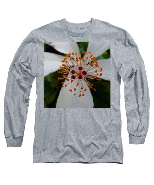 Center Long Sleeve T-Shirt by Pamela Walton