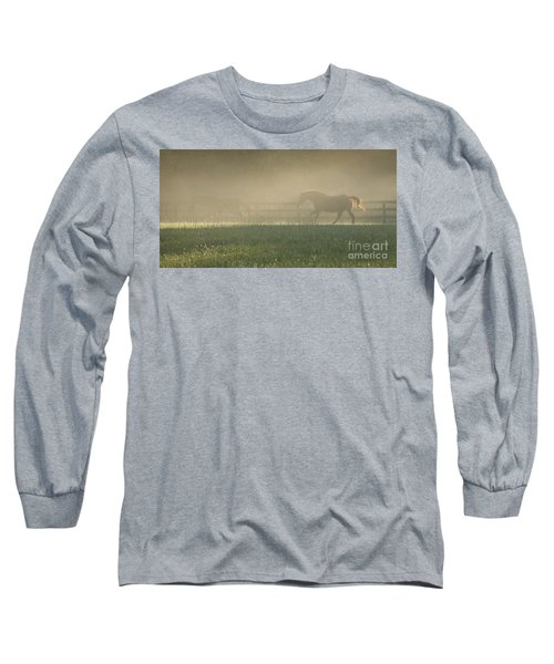 Chasing A Phantom Long Sleeve T-Shirt