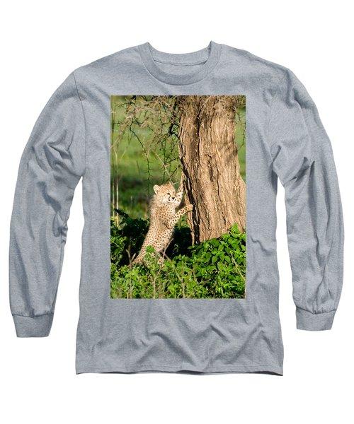 Cheetah Cub Acinonyx Jubatus Climbing Long Sleeve T-Shirt