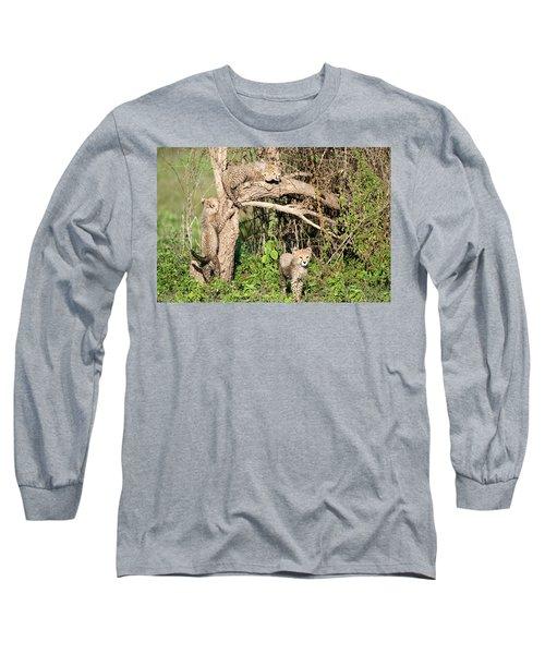 Cheetah Cubs Acinonyx Jubatus Climbing Long Sleeve T-Shirt