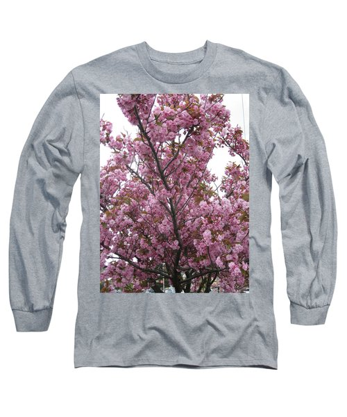 Cherry Blossoms 2 Long Sleeve T-Shirt by David Trotter