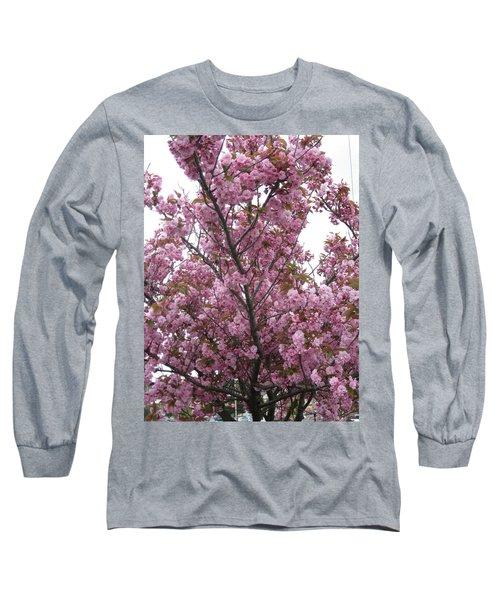 Cherry Blossoms 2 Long Sleeve T-Shirt