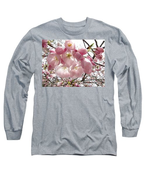Cherry Blossoms Long Sleeve T-Shirt by Jennifer Wheatley Wolf