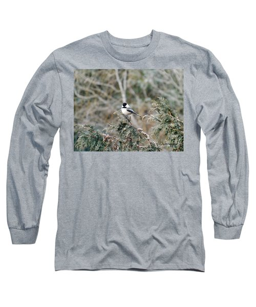 Long Sleeve T-Shirt featuring the photograph Chickadee In Cedar by Brenda Brown