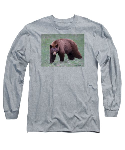 Cinnamon Black Bear Long Sleeve T-Shirt