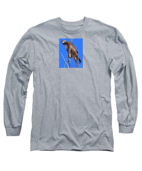 Hawk Close Up  Long Sleeve T-Shirt