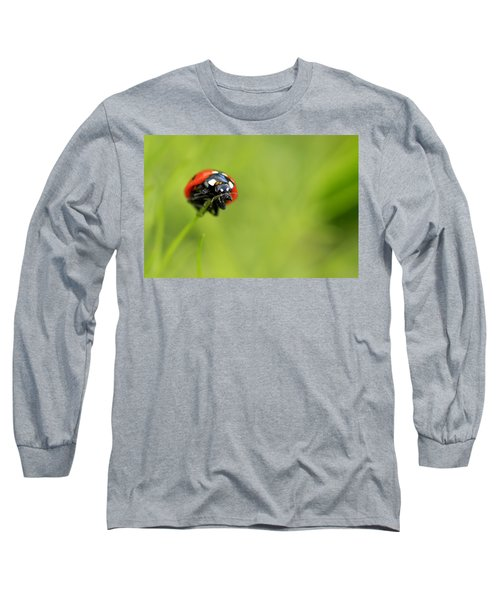 Coccinellidae  Long Sleeve T-Shirt