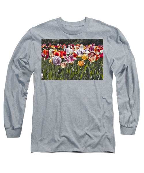 Colorful Tulips In The Sun Long Sleeve T-Shirt