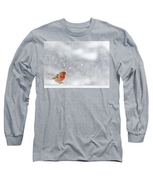 Coming In For A Landing Long Sleeve T-Shirt by Diane Alexander