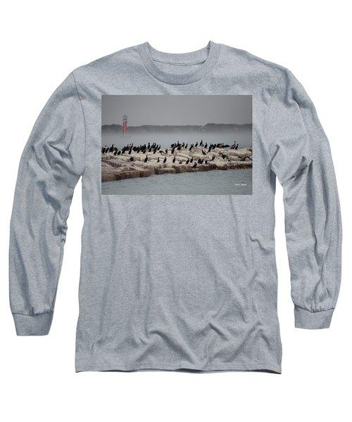 Long Sleeve T-Shirt featuring the photograph Cormorant Island by Debra Martz
