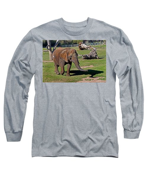 Cuddles Searching For Snacks Long Sleeve T-Shirt