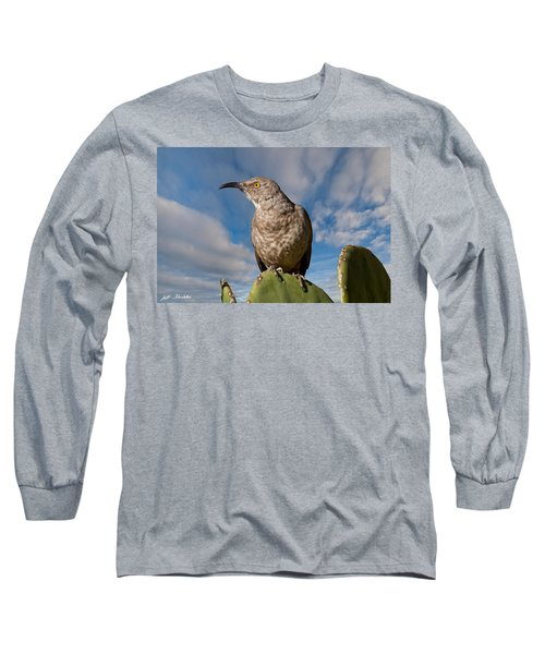 Curve-billed Thrasher On A Prickly Pear Cactus Long Sleeve T-Shirt