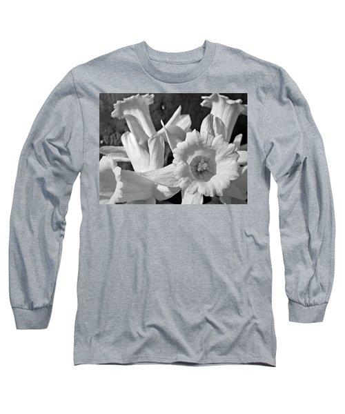 Daffodil Monochrome Study Long Sleeve T-Shirt