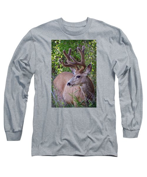 Buck In The Woods Long Sleeve T-Shirt by Athena Mckinzie