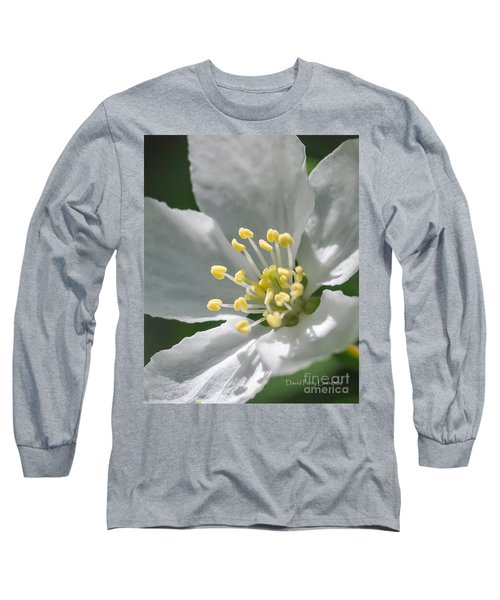Delcate Widflower With Beautiful Stamen Long Sleeve T-Shirt by David Perry Lawrence