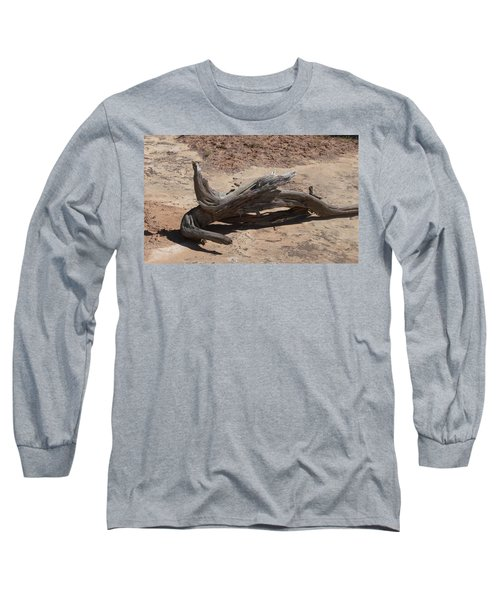 Long Sleeve T-Shirt featuring the photograph Desert Wildwood by Fortunate Findings Shirley Dickerson