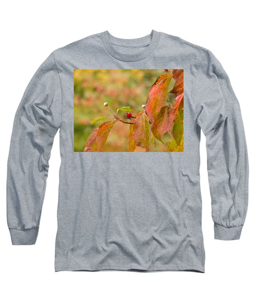 Long Sleeve T-Shirt featuring the photograph Dogwood Berrie by Nick Kirby