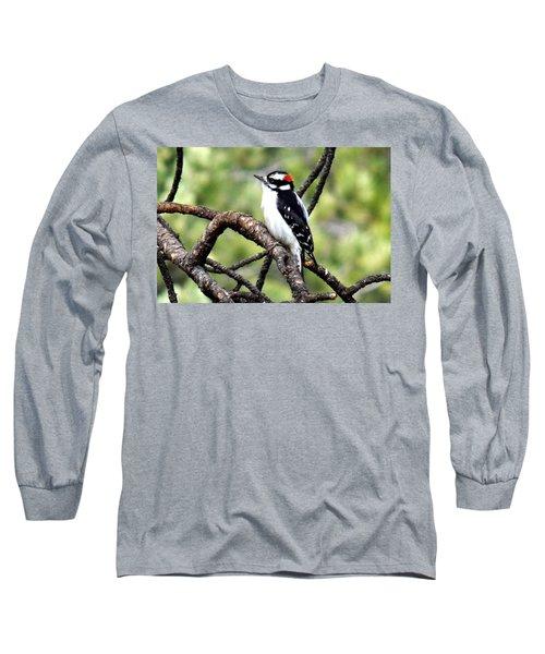 Downy Woodpecker Long Sleeve T-Shirt