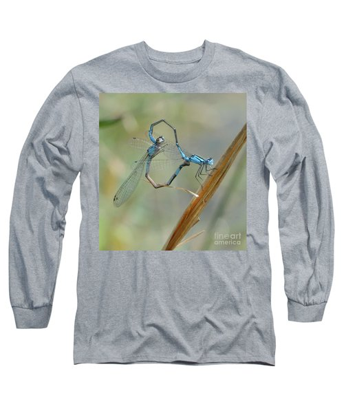 Dragonfly Courtship Long Sleeve T-Shirt by Amy Porter
